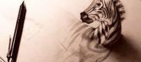 نقاشی های شگفت انگیز و بسیار جالب سه بعدی