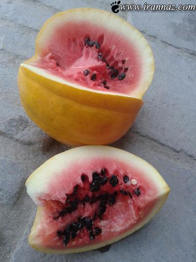 این هندوانه بسیار عجیب همه را بهت زده کرد (عکس)