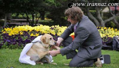 ازدواج بسیار عجیب و جالب این مرد با سگش!! (عکس)