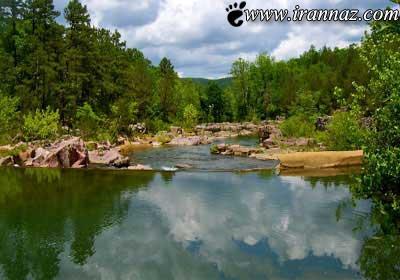 10 جنگل بسیار شگفت انگیز و زیبا در دنیا (عکس)