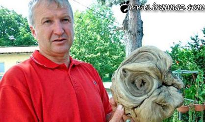 http://www.irannaz.com/images/2013/09/1/Incredible-photo-of-real-alien-on-Earth.jpg