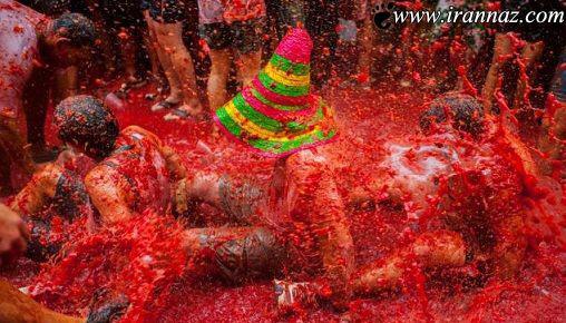 تصاویری از جشن بسیار جالب پرتاب گوجه فرنگی