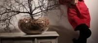عکس هایی از مدل مانتو های پاییزه ی بسیار شیک
