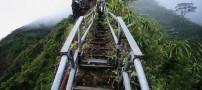 از این مکان تا به حال بالا رفته اید؟ (عکس)