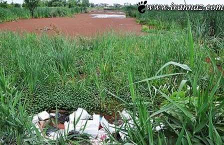 تالاب کیاکلایه در ایران جنجال به پا کرد (عکس)