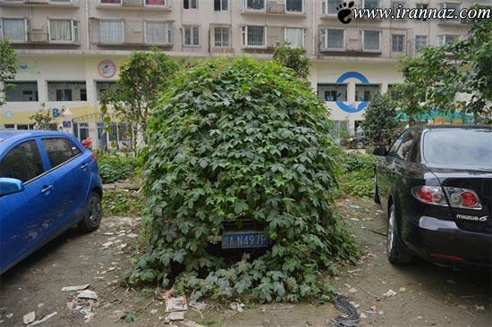 خودروی واقعی زامبی ها کشف شد (عکس)