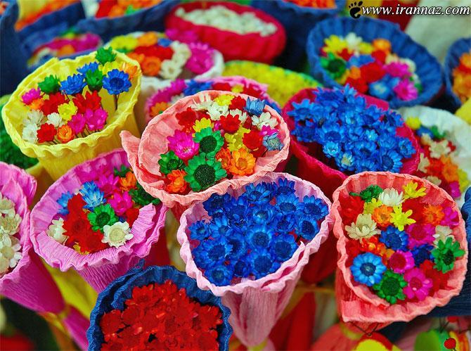 عکس های رنگارنگ بسیار زیبا و دیدنی
