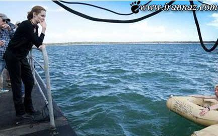 آنجلینا جولی و شغل جدیدش سوژه شد (عکس)