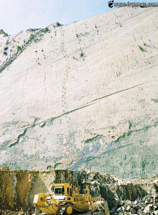 کشف شدن رد پای دایناسور واقعی (عکس)