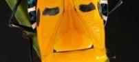 خواننده مشهور هالیوود شیبه این حشره است! (عکس)