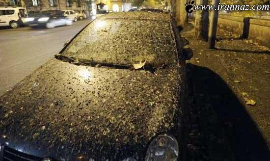باران مدفوع سراسر ایتالیا را گرفت (عکس)