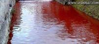 این دریاچه ی خونین همه را می ترساند (عکس)