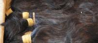 کشف یک تن موی انسان در این فرودگاه (عکس)