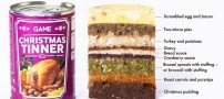 9 غذا در یک ظرف باورنکردنی و جالب (عکس)