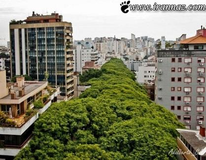 زیباترین و شگفت انگیزترین خیابان دنیا در برزیل (عکس)