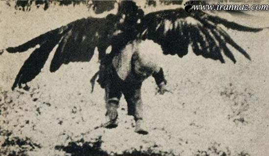 شکار وحشتناک این پسر بچه توسط یک عقاب (عکس)