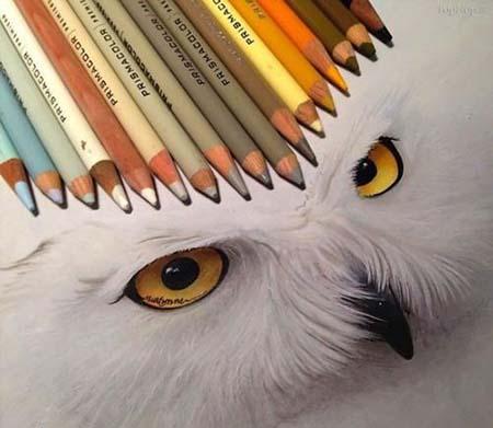 نقاشی های کاملا طبیعی با مداد رنگی (عکس)