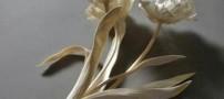 ساخت مجسمه های بسیار زیبا از استخوان (عکس)