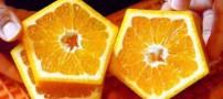 تا حالا پرتقال 5 ضلعی دیده بودید؟ حالا ببینید (عکس)