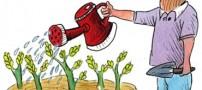کاریکاتورهای بسیار جالب درباره روز درختکاری