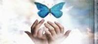 این دعای مجرب را برای حوائج خود بخوانید و امیدوار باشید