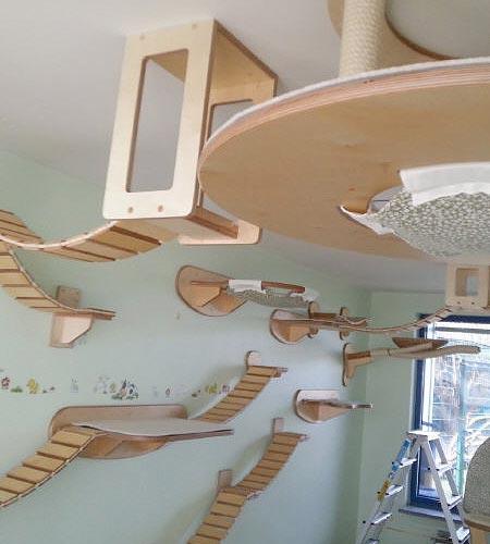 طراحی بسیار جالب برای مبلمان گربه خانگی (عکس)