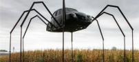 ساخت خودروهای دست ساز عجیب اما واقعی (عکس)