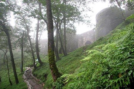 پارک جنگلی شوراب