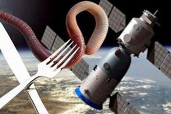 غذای چندش آور فضانوردان چینی! (عکس)