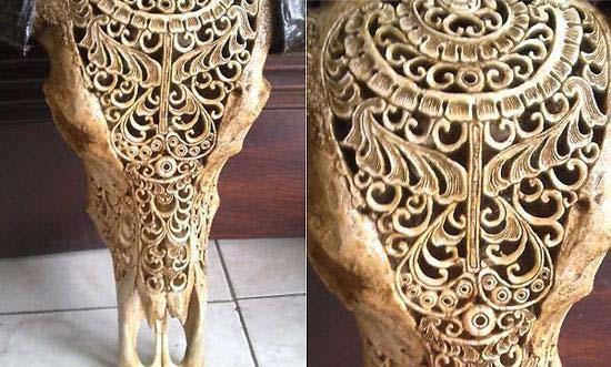 هنر زیبای منبت کاری رو ی جمجمه حیوانات (عکس)