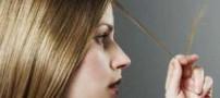 آیا موخوره با نحوه شستن موها ارتباطی دارد؟