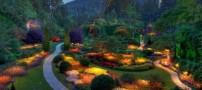 سفری خاطره انگیز به باغ بوچارت کلمبیا (عکس)