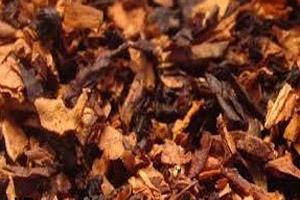 استفاده از تنباکو چه تأثیری روی بدن می گذارد؟