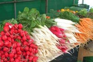 مراحل صحیح ضدعفونی کردن سبزیجات