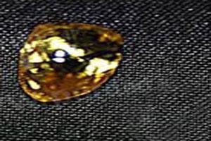 این دختر در پارک یک الماس قیمتی پیدا کرد! (عکس)