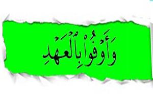 گناهی که انسان را مفسد فی الارض می کند