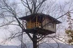 باحال ترین خانه در شمال (عکس)