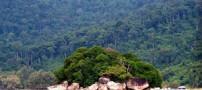 10 مکان دیدنی و جذاب در مالزی (عکس)