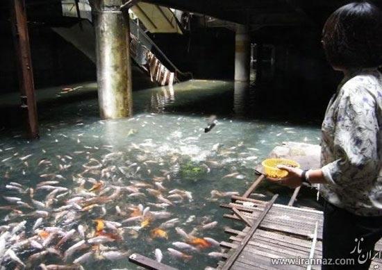 فروشگاهی بزرگ در بانکوک که تبدیل به یک جاذبه دیدنی شده است! (عکس)