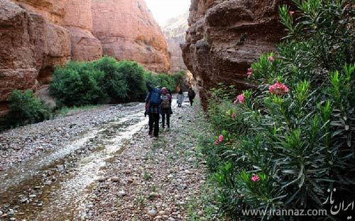 سفری به دره توبیرون در استان خوزستان (عکس)