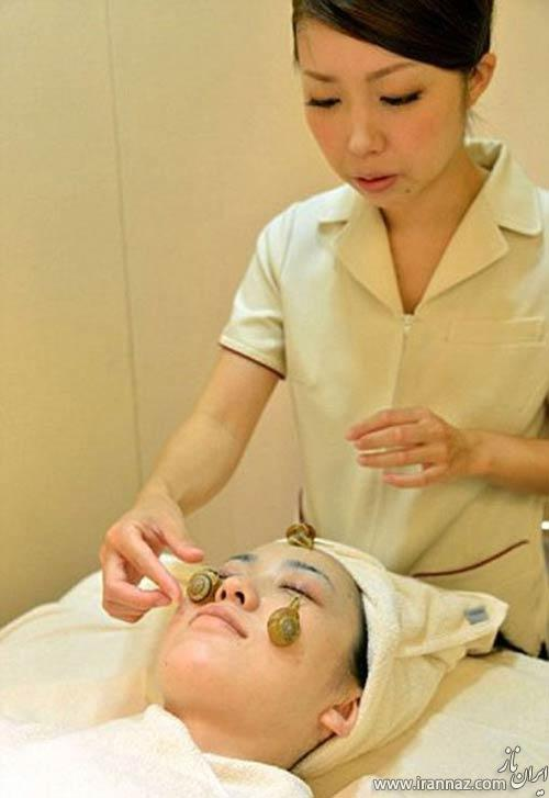 استفاده از حلزون برای زیبایی در ژاپن (عکس)