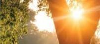 تأثیر نور صبحگاهی روی بدن و پوست