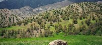 سفری به جاذبه های دیدنی استان ایلام (عکس)
