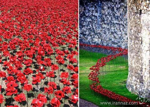 عکس هایی زیبا از کاخ سلطنتی لندن