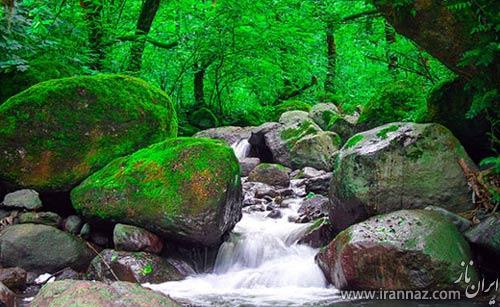 عکس هایی زیبا از طبیعت آرامبخش شمال ایران