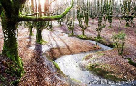 تصاویری از یک پارک رویایی در اسپانیا
