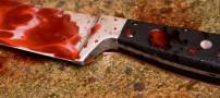 قتل وحشتناک مادر توسط دختر 17 ساله اش! (عکس)