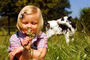 درباره بیماری تب یونجه یا حساسیت فصلی چه می دانید؟