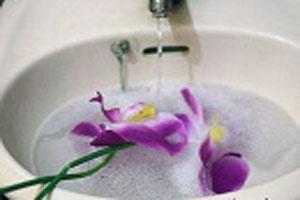 روشی برای تمیز کردن گل های مصنوعی