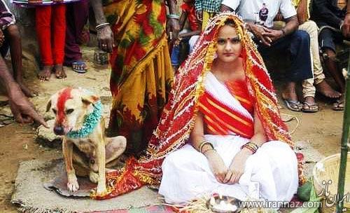 ازدواج دختر هندی با یک سگ ولگرد! (عکس)